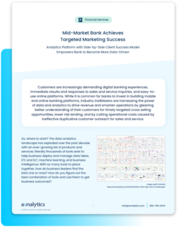 Case Study: Mid-Market Bank Achieves Targeted Marketing Success